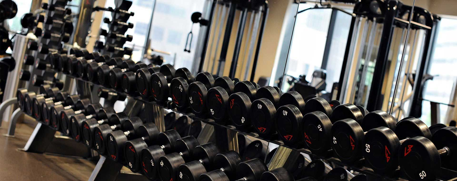 What helps to make muscles during gym training?
